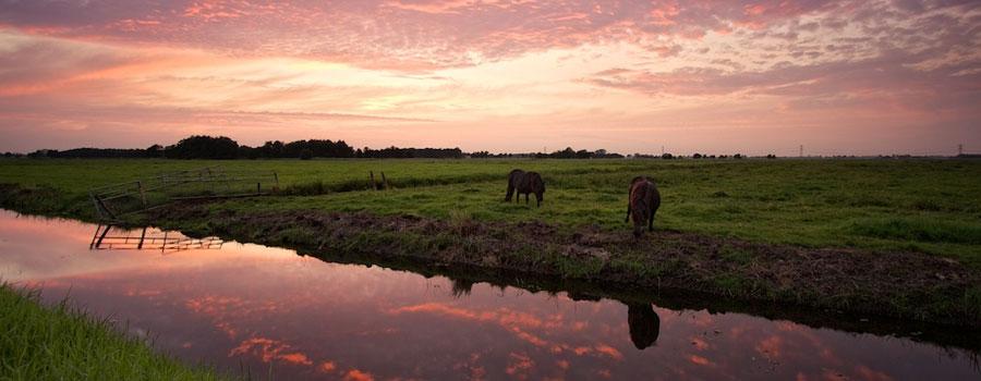 avondtocht rondvaart Friesland